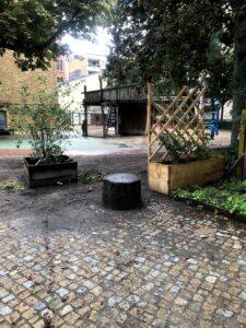Frisch gepflanzte Felsenbirne und Brombeeren verschönern unseren Hofgarten